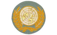United Nations Gold Bullion Wire Blazer Badge