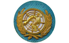United Nations Hand Embroidered Gold Bullion Wire Blazer Badge