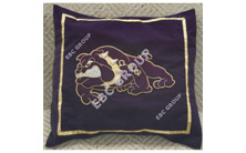 Hand Embroidered Pillow Cover